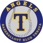LOGO_ANGELS